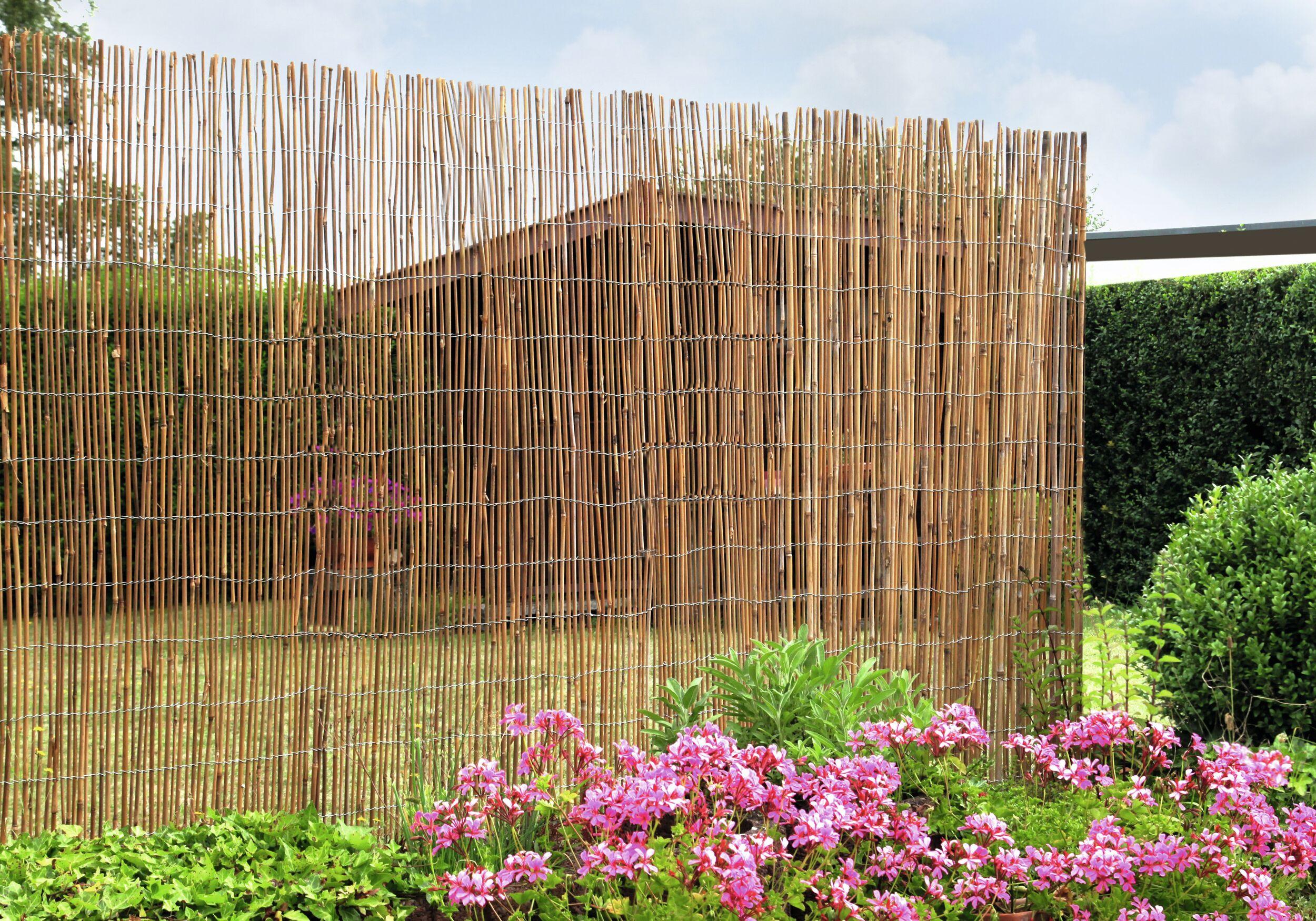 Floraworld Sichtschutz Bambus 300 X 150 Cm Comfort Extra Stark
